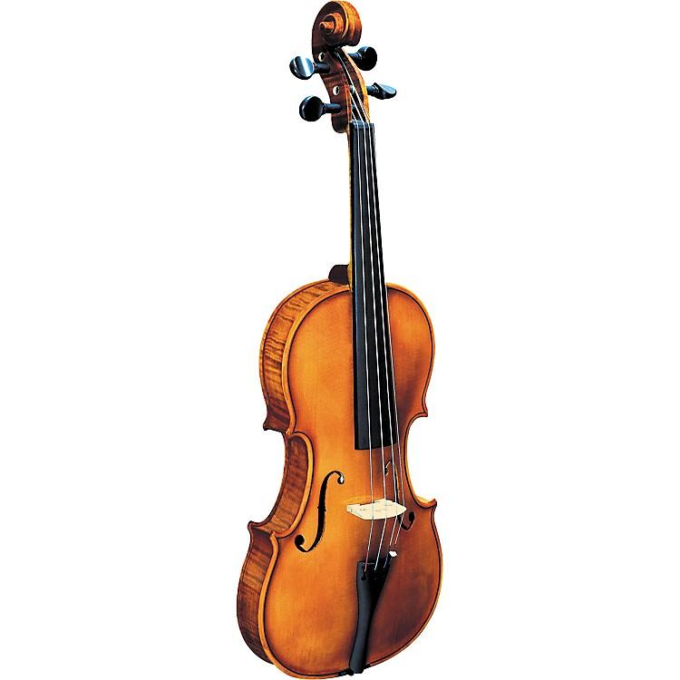 Strunal193WA BH Concert Violin Outfit