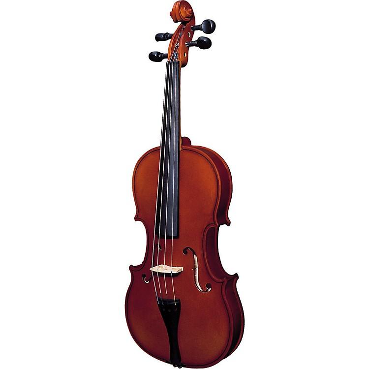 Strunal220 Series Violin Outfit