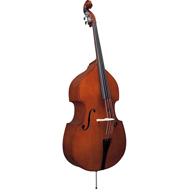 Strunal 5/5 Series Bass 3/4 Instrument Only