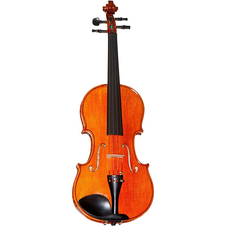 Meisel 6107A Series 4/4 Violin Outfit