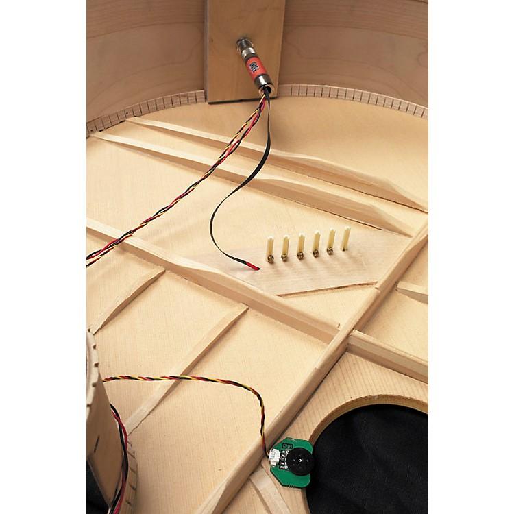 B-BandA1.2-22R Endpin Preamp/UST Acoustic Guitar Pickup System