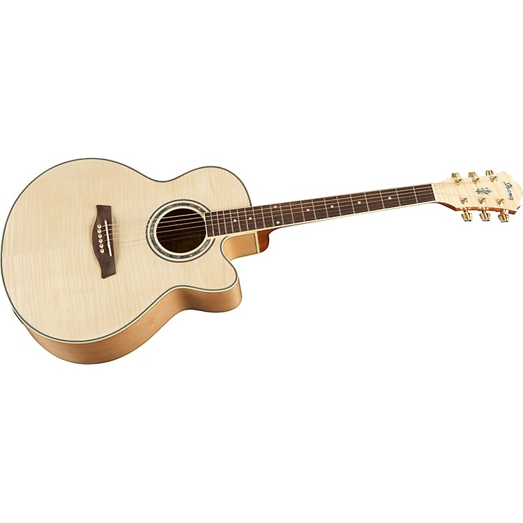 Ibanez AEL20ENT Acoustic-Electric Guitar Natural
