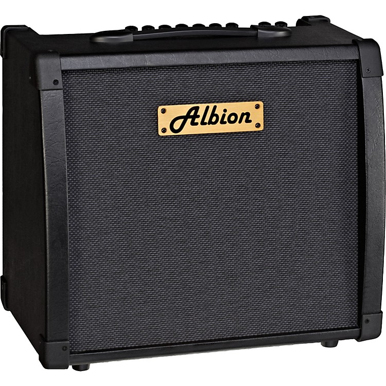 Albion Amplification AG Series AG40DFX 40W Guitar Combo Amp Black
