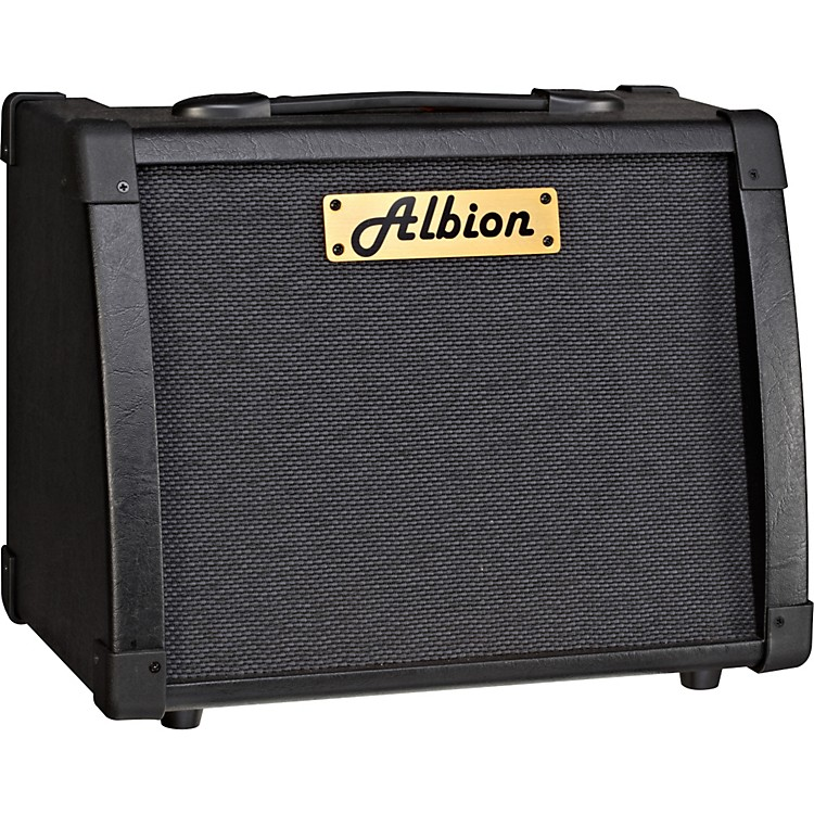 Albion AmplificationAG Series AG40R 40W Guitar Combo Amp