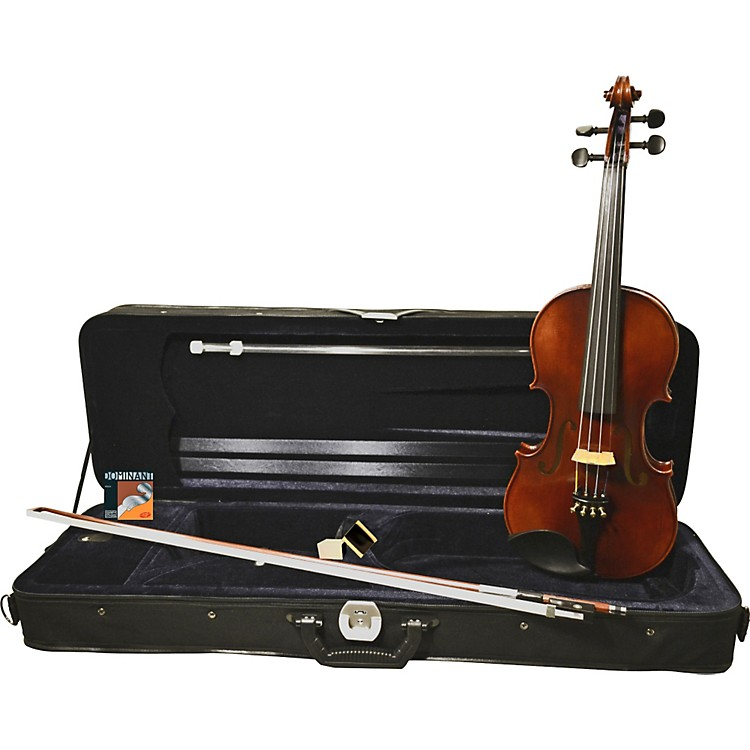 FloreaAlexandria Violin Outfit