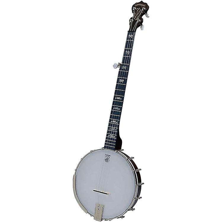 DeeringArtisan Goodtime 5-String Openback Banjo