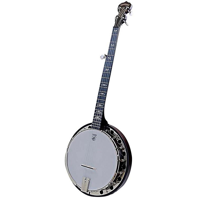 DeeringArtisan Goodtime Special 5-String Resonator BanjoNatural