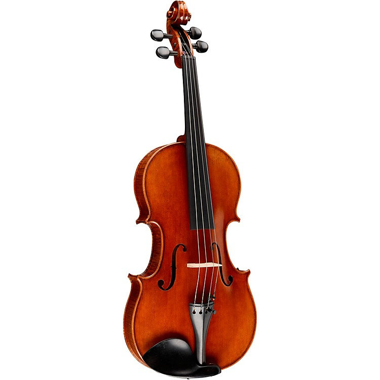 Ren Wei ShiArtist Viola15 1/2 In. with Arcolla Bow and Oblong Case
