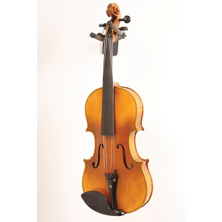 Ren Wei Shi Artist Viola 15 1/2 In. with Arcolla Bow and Oblong Case 886830140372