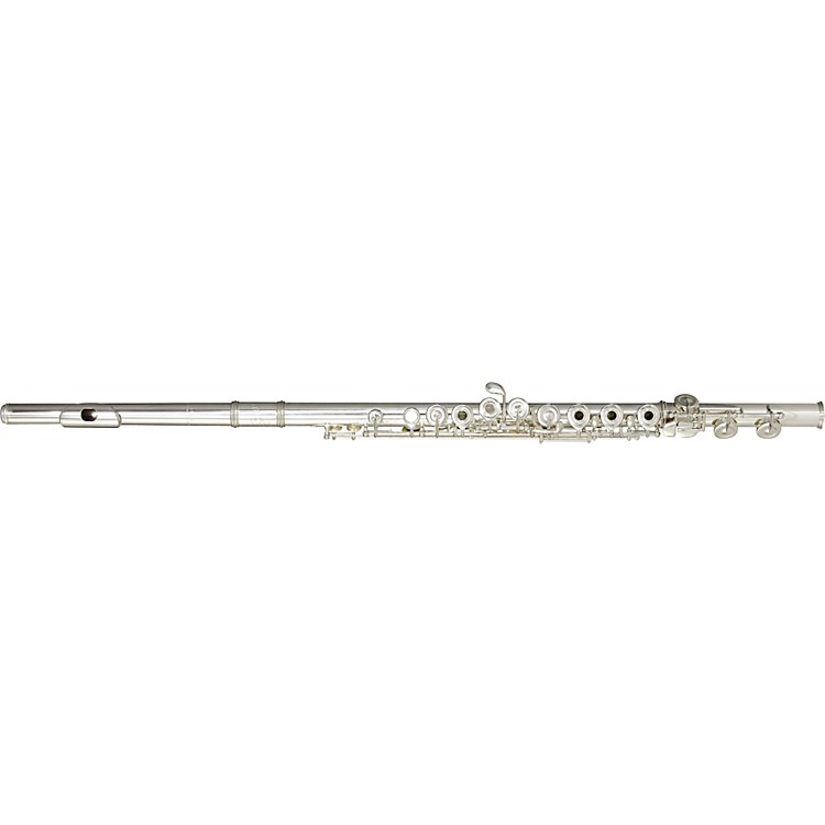 BrioB1 Series Professional FluteSilverOffset G W/ E Facilitator