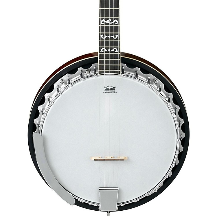 Ibanez B100 5-String Banjo Natural Closed Back