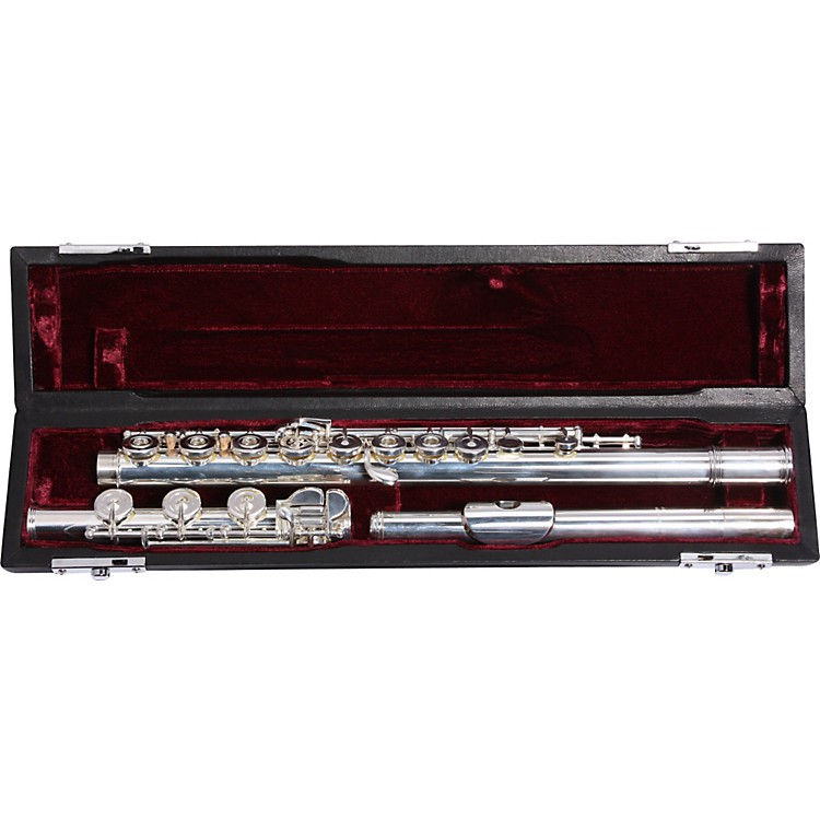 BrioB2 Series Professional FluteSilverOffset  G W/ E Facilitator