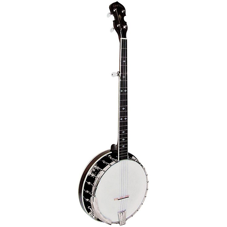 Gold Tone BG-250F Resonator Banjo Natural