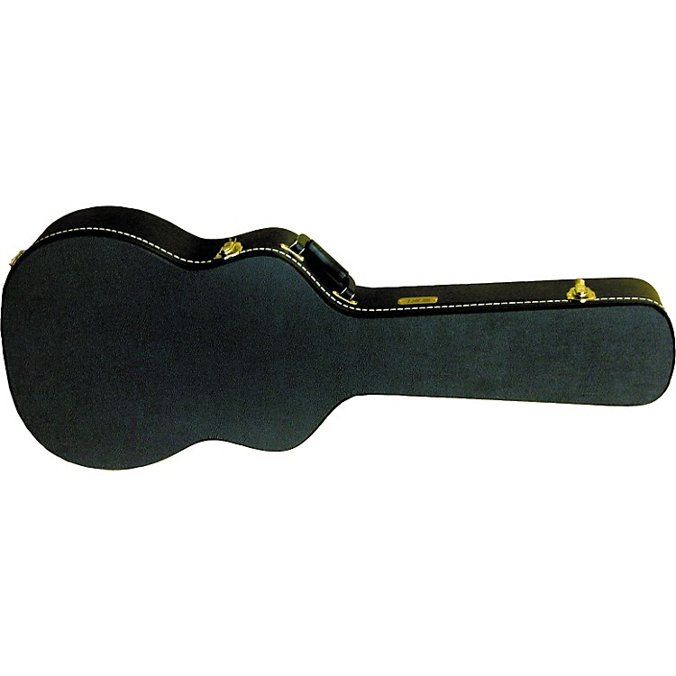 Gold Tone Beard Resonator Hard Case