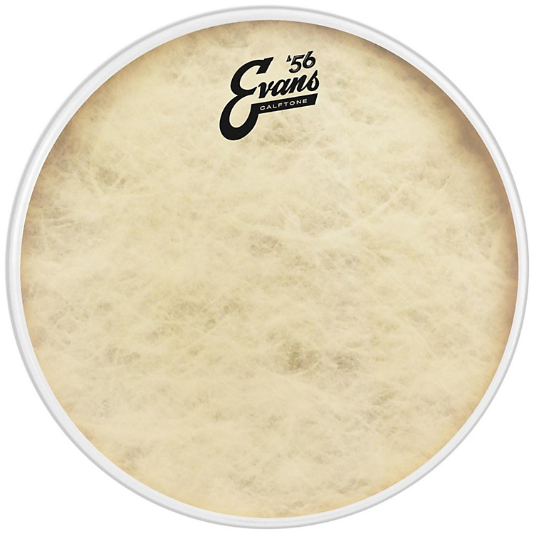 EvansCalftone Drumhead12 in.