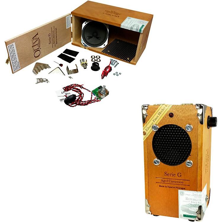 C.B. GittyCigar Box Amplifier Kit