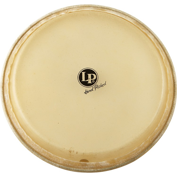 LP Conga Head 11
