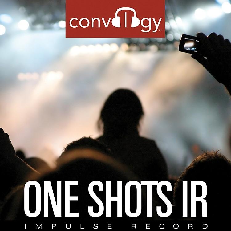 Impulse RecordConvology One ShotsSoftware Download