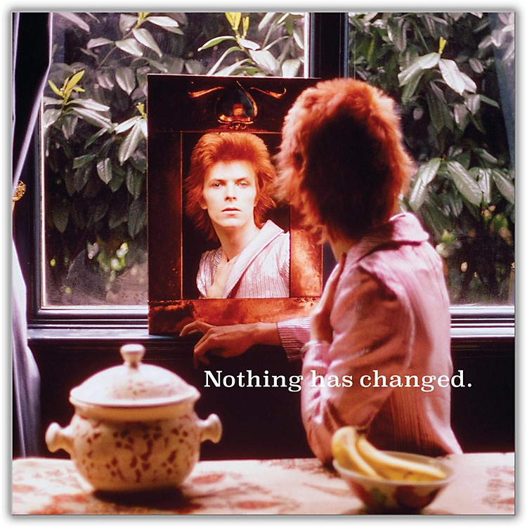 SonyDavid Bowie - Nothing Has Changed Vinyl LP