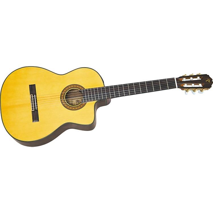 TakamineEC-132C Classical Guitar
