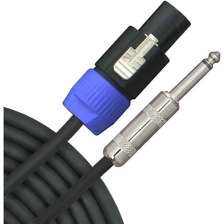 Livewire Elite 12g Speakon to 1/4 in. 2-Pole Speaker Cable  10 ft.