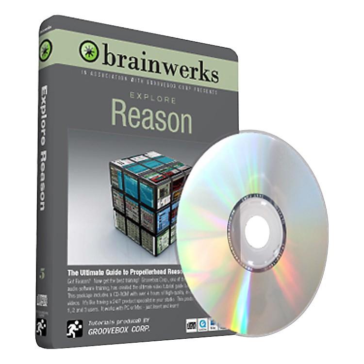 BrainwerksExplore Reason