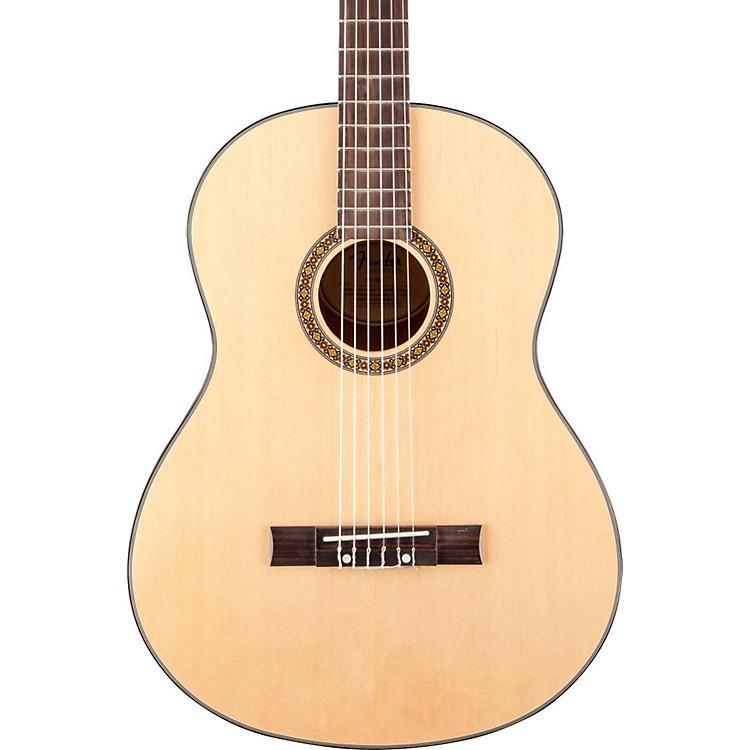 FenderFC-100 Classical Guitar Pack