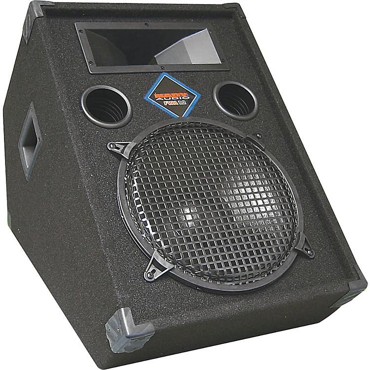 NadyFWA-12 Powered Floor Monitor