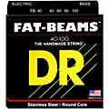 DR Strings Fat-Beams Stainless Steel Lite 4-String Bass Strings (40-100)