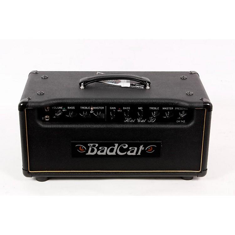 Bad CatHot Cat 30W Guitar Amp Head