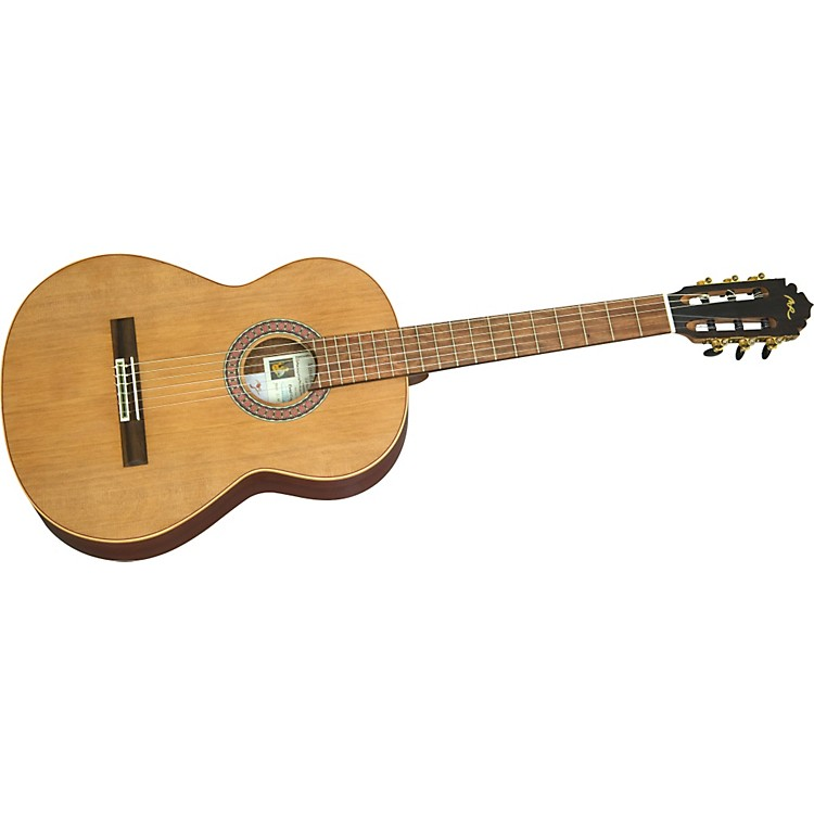 Manuel RodriguezManuel Rodriguez C3 Mate Nylon String Acoustic Guitar (Matte finish)