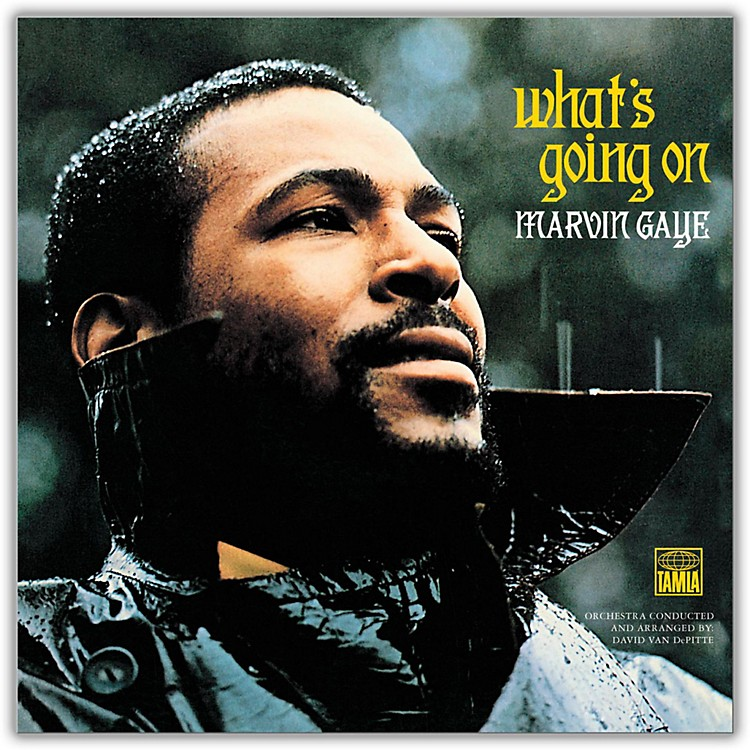 Universal Music GroupMarvin Gaye - What's Going On Vinyl LP