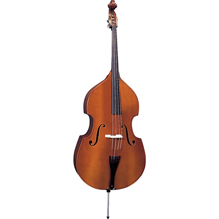 Bellafina Model 60 Double Bass Outfit 1/2  Size