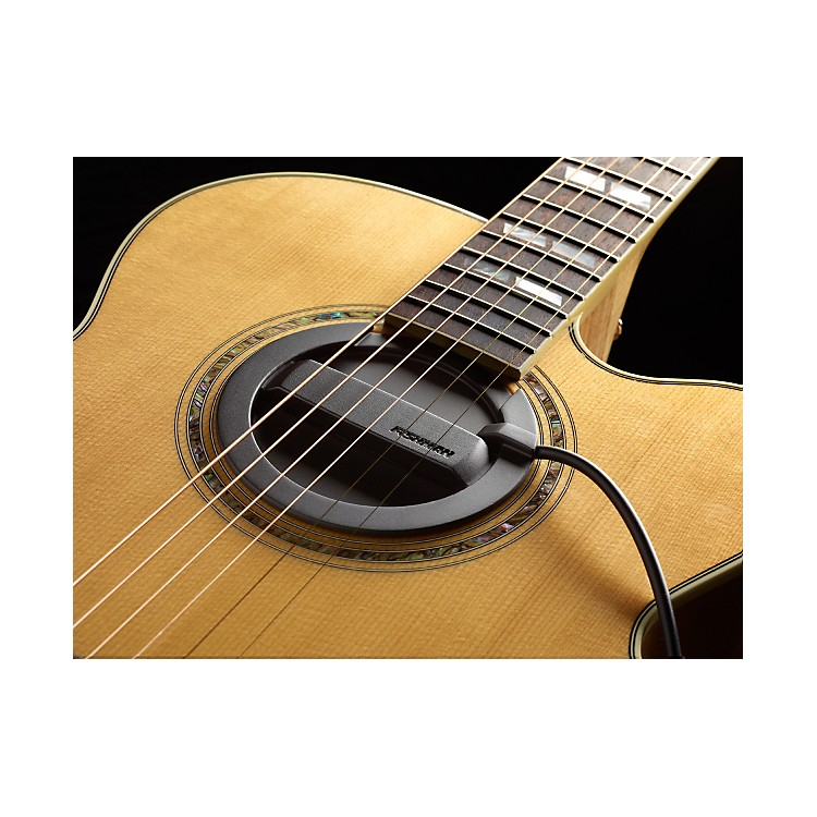 FishmanNeo-Buster Single Coil Acoustic Guitar Soundhole Pickup/Feedback Buster