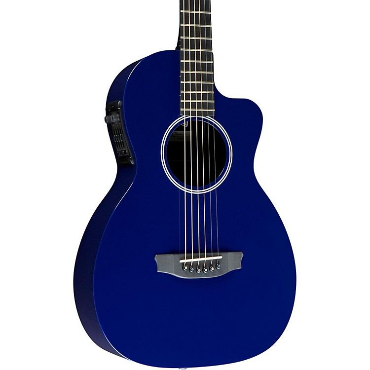 RainsongP12 6-String Parlor with 12-Fret NS Neck