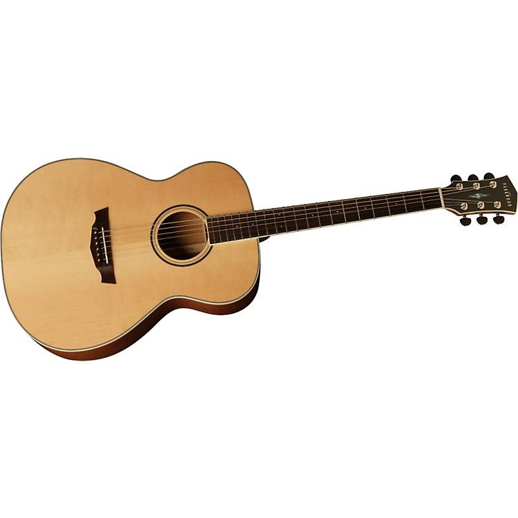 ParkwoodPW320M GA Acoustic Guitar