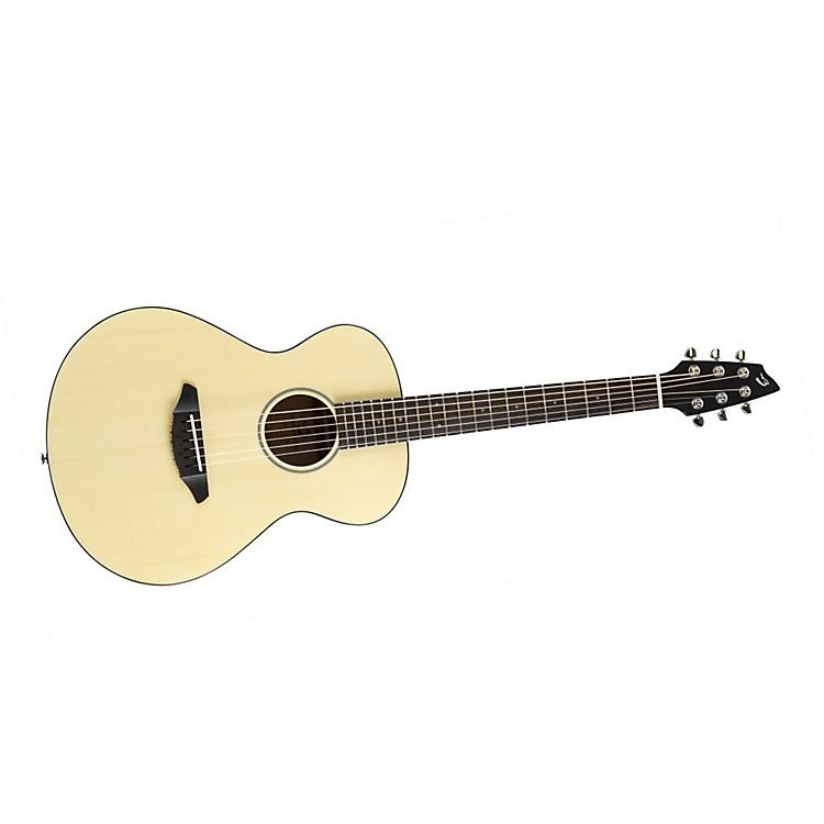 BreedlovePassport C200/SMe Acoustic-Electric Guitar