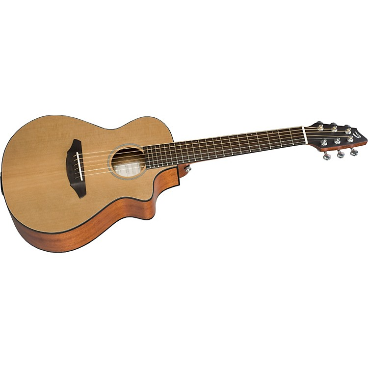 Breedlove Travel Guitar Review