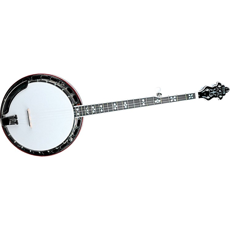 Recording King RK-R80 Professional Banjo Natural