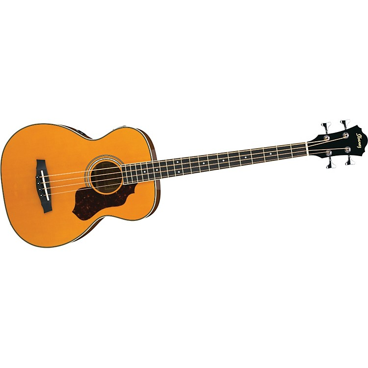 IbanezSage Series SGBE110 Acoustic-Electric Bass Guitar
