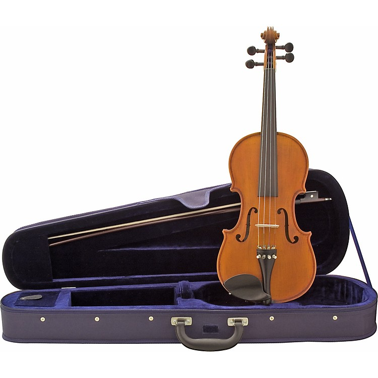 FloreaSecal Violin Outfit
