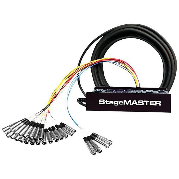 Pro CoStageMASTER SMC Series 28-Channel Snake100 ft.