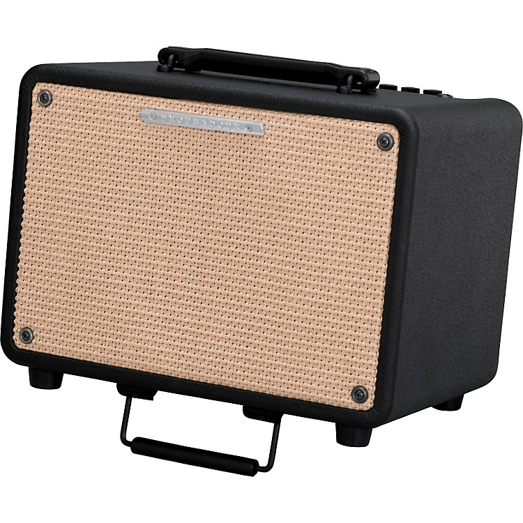 IbanezTroubadour T30 30W Acoustic Combo AmpBlack