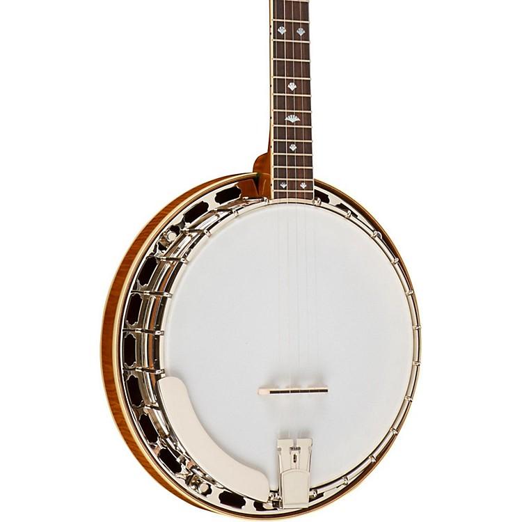 Recording KingUSA Series M5 Banjo
