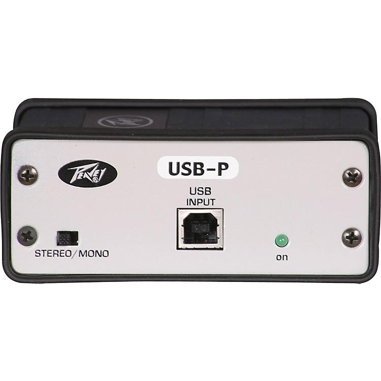 PeaveyUSB-P USB DI/Format Converter