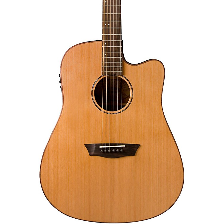 Washburn WD160SWCE Solid Wood Acoustic Electric Guitar