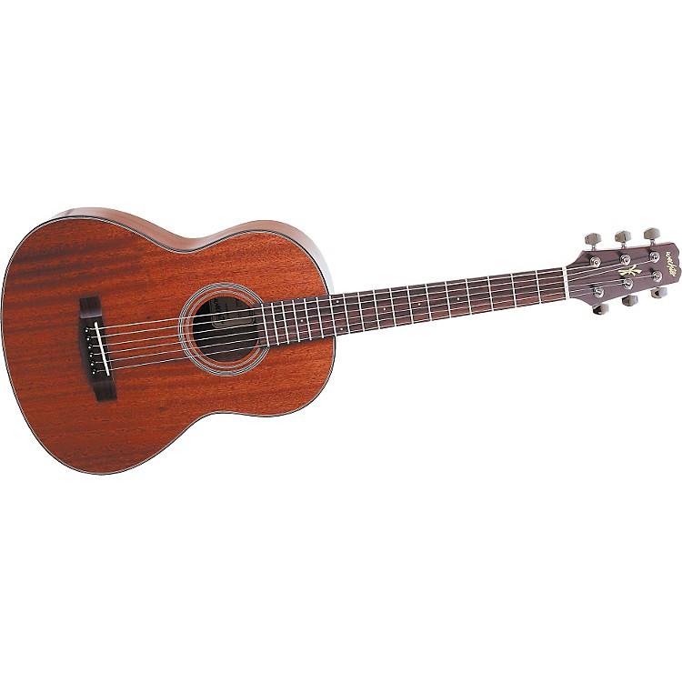 wechter guitars 1720 acoustic electric travel guitar music123. Black Bedroom Furniture Sets. Home Design Ideas