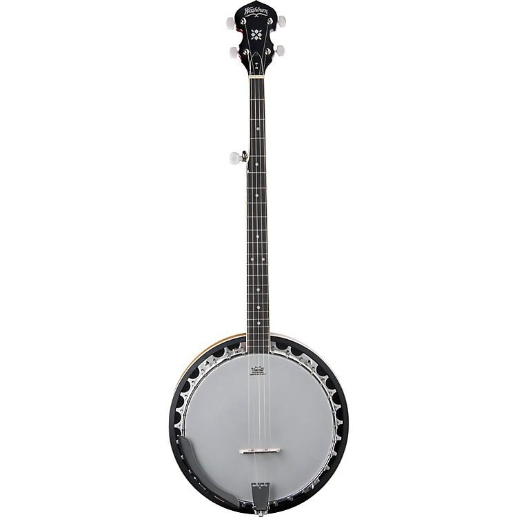 Washburn5-String Banjo