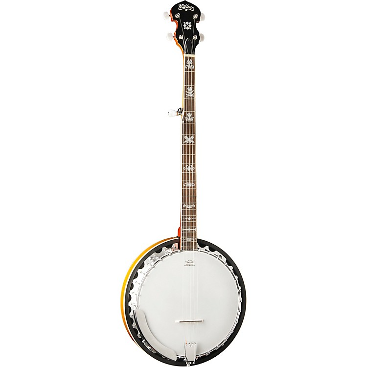 Washburn 5-string Banjo
