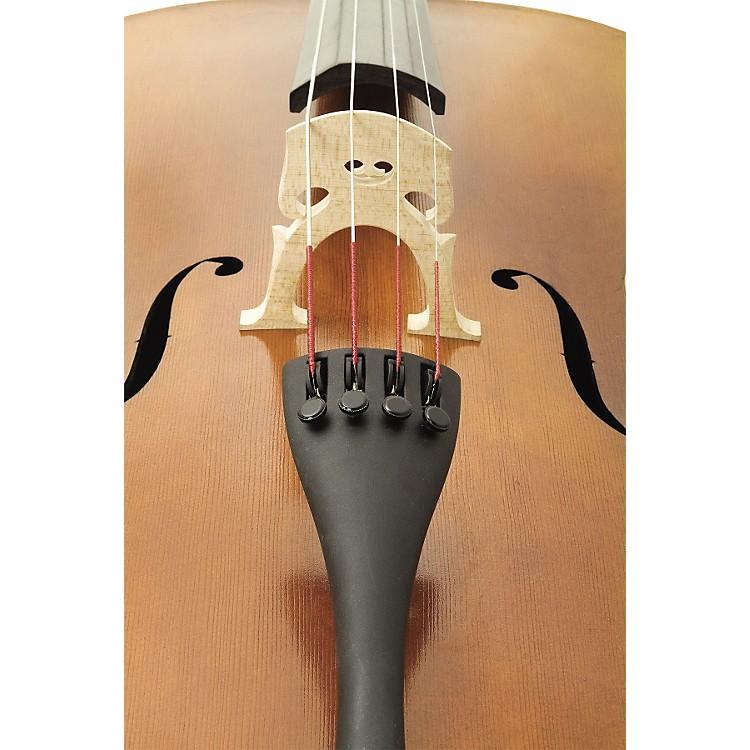 Bellafina50L cello outfit